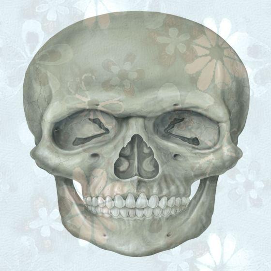 Blue Floral Skull